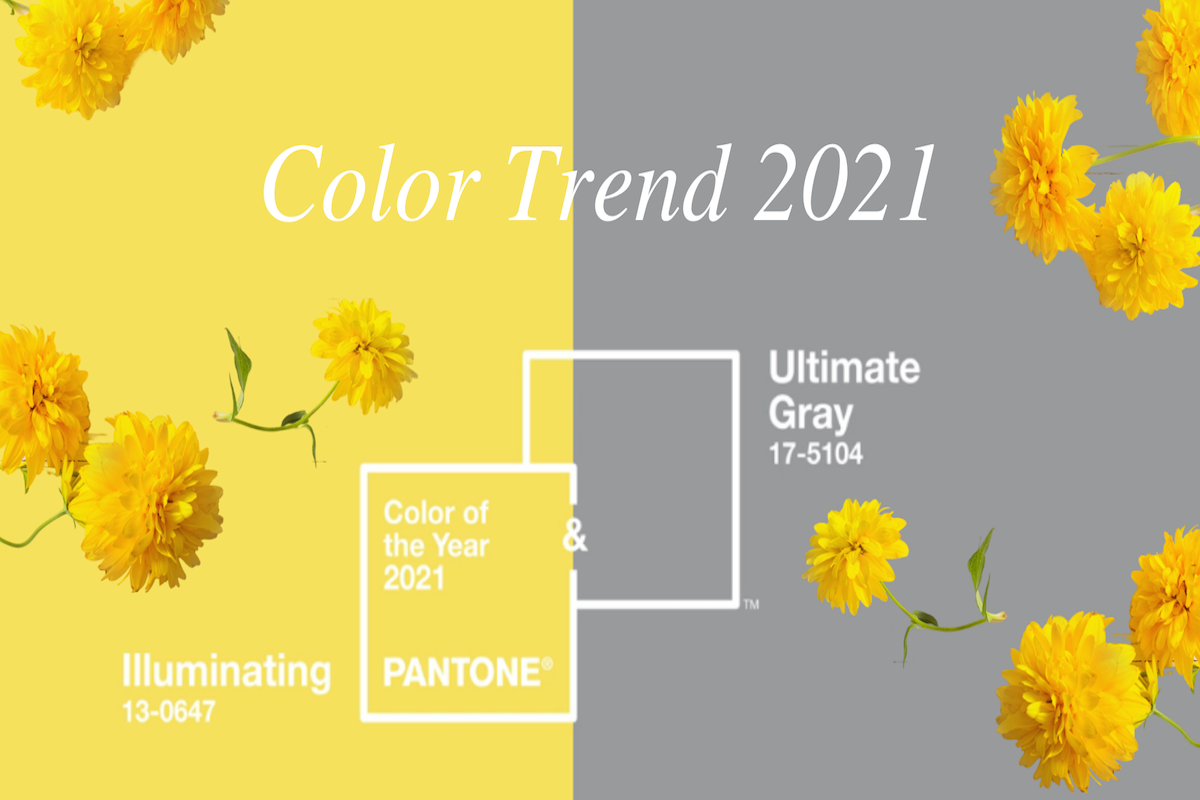 COLOR TREND 2021